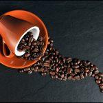 Doświadczona palarnia kawy