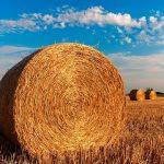 Maszyny na potrzeby rolnictwa